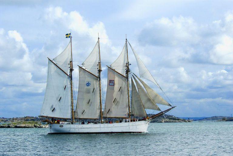 tall ship ingo