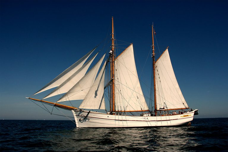 tall ship loyal